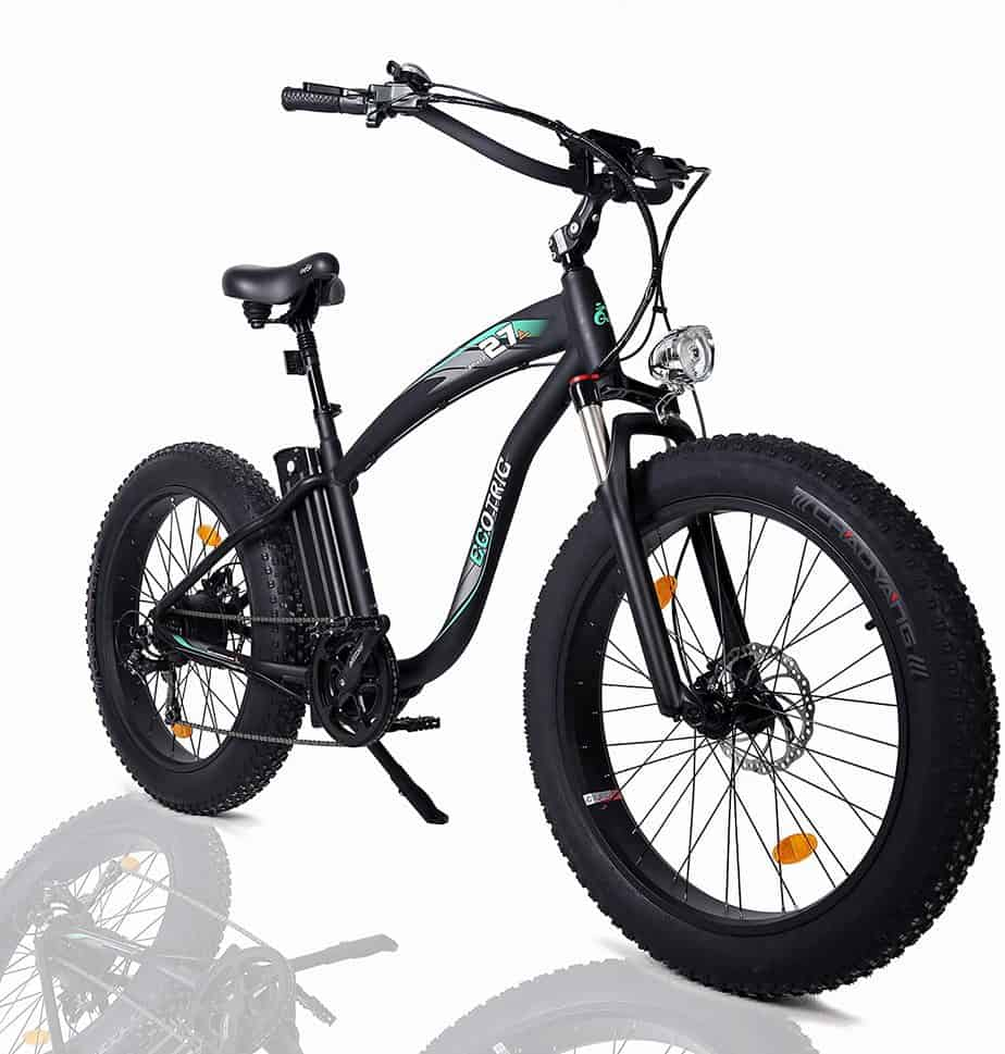 ECOTRIC Powerful Fat Tire Electric Bike